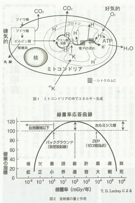 15p図1図2